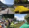 가을향기 가득한 '10월의 농촌여행'