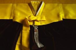 woman's hanbok chogori